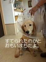 20131010_112542.jpg