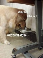 20140831_112401.jpg