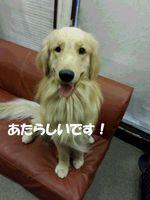 20140902_162824.jpg