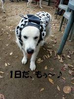 20141130_153941.jpg