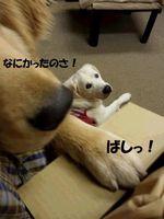 20141210_180131.jpg