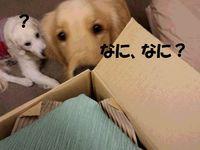 20141210_180245.jpg