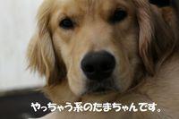 IMG_3099.jpg