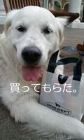 2013-03-13 14.00.31.jpg