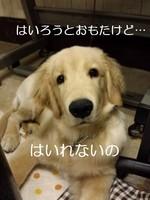 20130721_031428.jpg