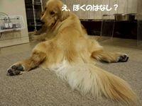 20140819_221648.jpg